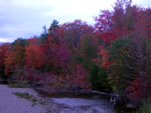 Autumn's palette tends to be most vivid in mid-October, but it varies from year to year due to climate conditions. Craig Davis, Craigslegz.com