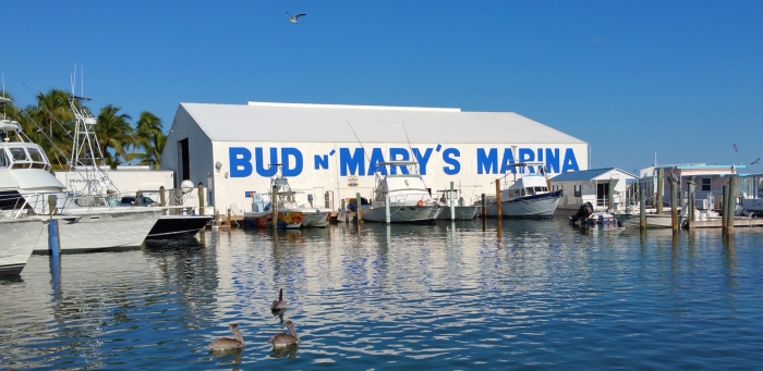 bud-n-marys-marina-basin