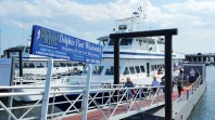 The Dolphin Fleet has several boats running whale watch excursions from Provincetown. (Craig Davis/Craigslegz.com)