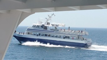 The Dolphin Fleet, which began operating whale watch trips in 1975, operate four boats out of Provincetown. (Craig Davis/Craigslegz.com)