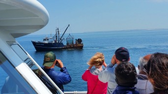 The whale watch outing also provided an opportunity to observe a scallop boat pulling in its catch. (Craig Davis/Craigsleg.com)